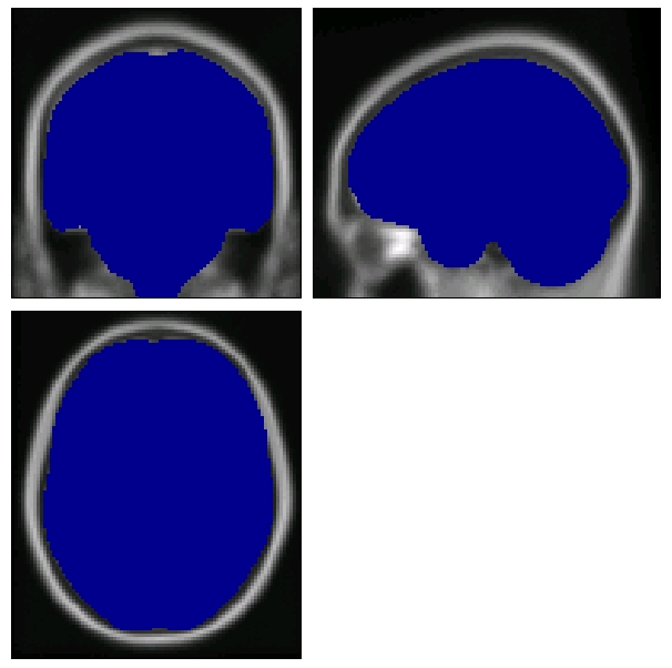 whole-brain mask image